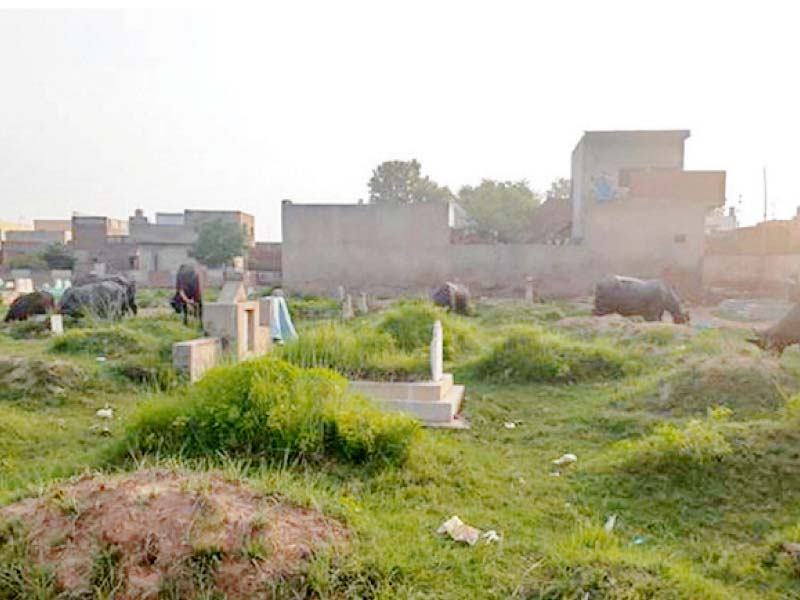 highlighting issues sanctity compromised miani graveyard in deplorable condition