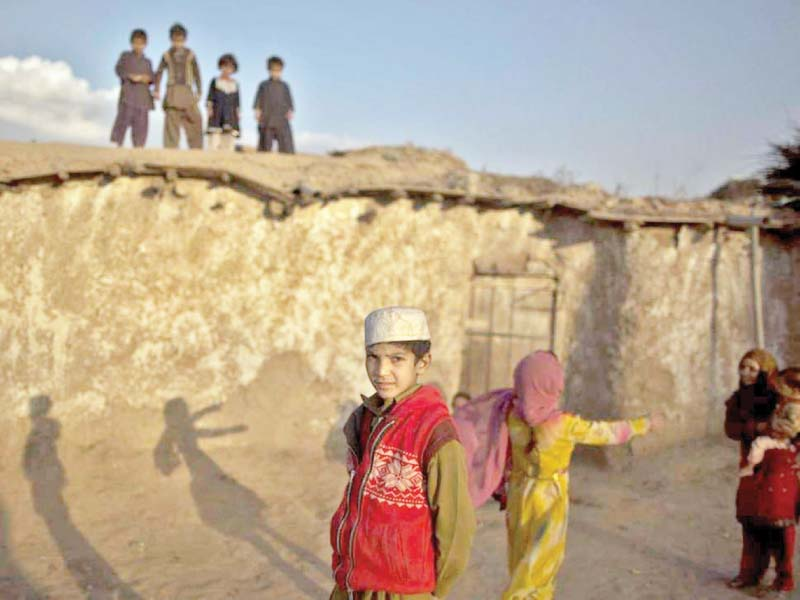 afghan dps repatriation only solution to refugee crisis