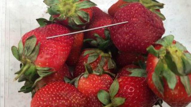 australia offers reward amid mystery strawberry needle scare