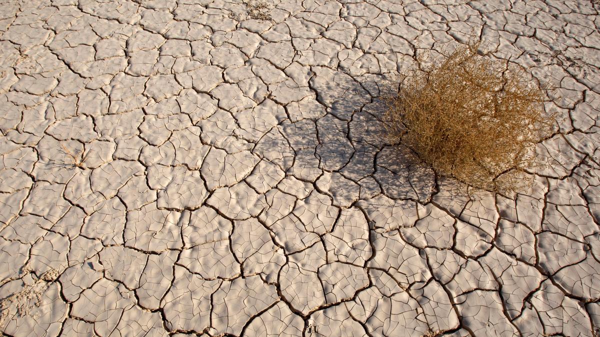 drought tarnishing khuzdar s beauty