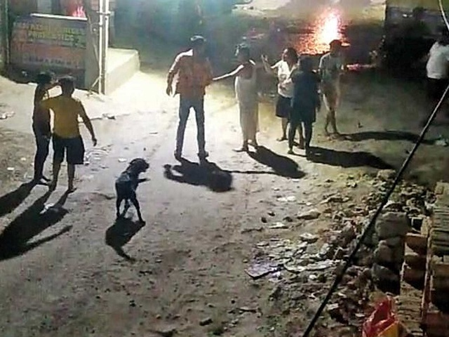 indian man stabbed to death for refusing apology to dog