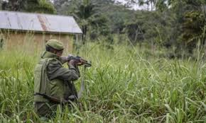 rebels kill 11 abduct 15 in dr congo