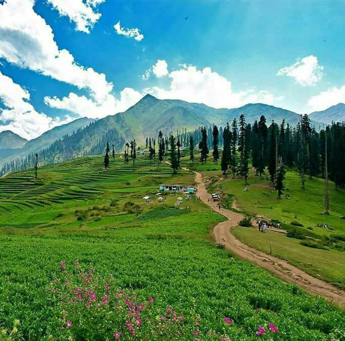 from breathtaking to breath holding govt apathy covering lush lalazar in trash