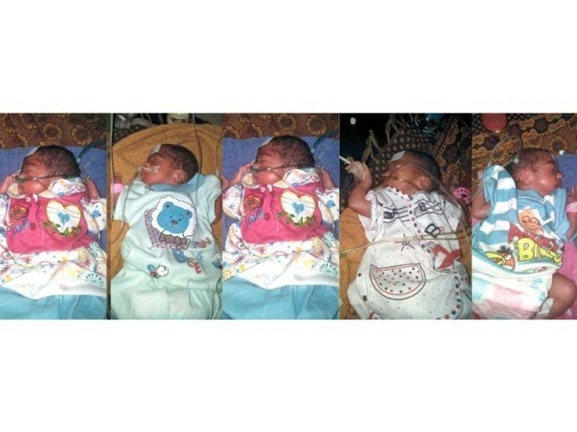 hina javed gave birth to four girls and two boys after nine years of marriage photo express file