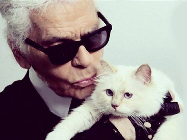 karl lagerfeld s cat could inherit his 200 million fortune