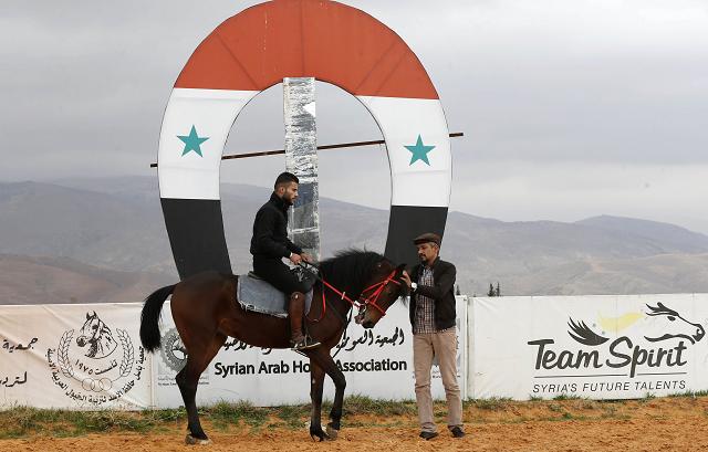 war horses syria s arabian beauties plod way to recovery
