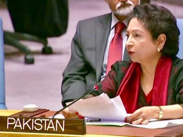 ambassador lodhi links attack to stereotyping saying it can lead to demonisation photo file