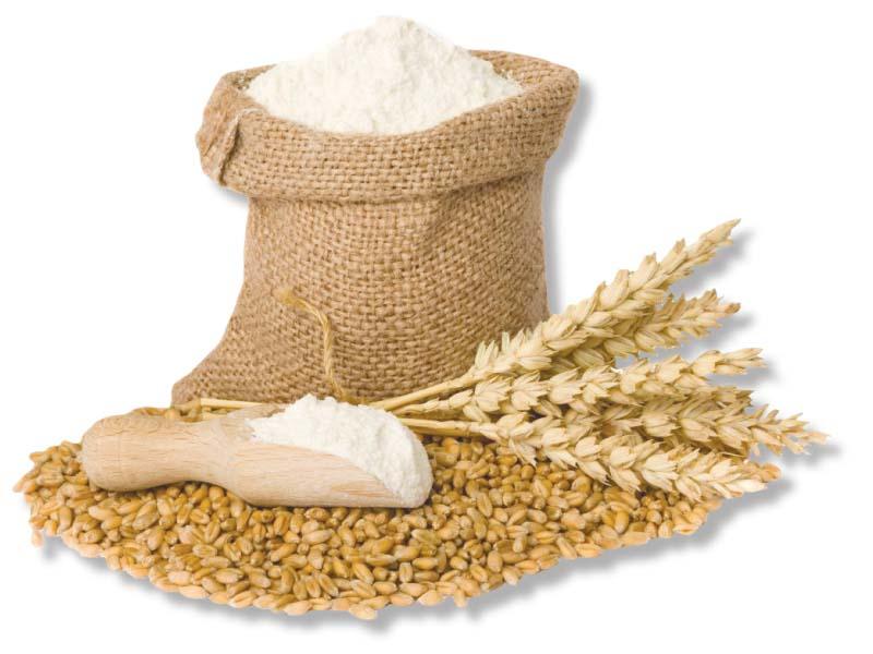 punjab food department facing acute dearth of wheat storage silos