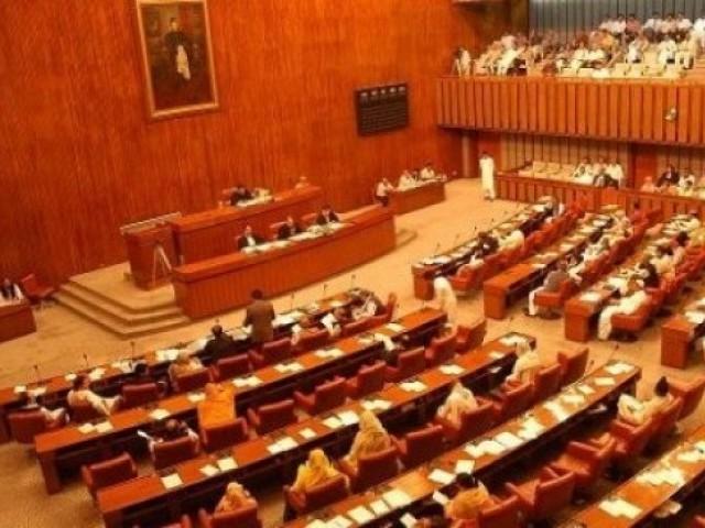 senate of pakistan photo file