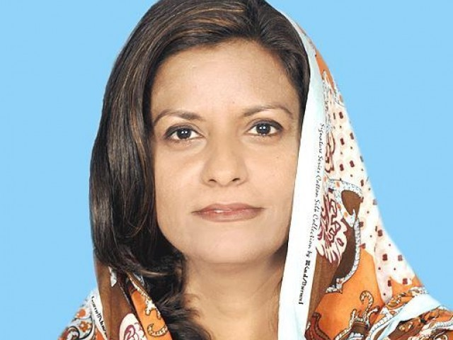 the pti government is inaugurating development projects planned and worked on by the previous government and taking credit for them said nafeesa photo file