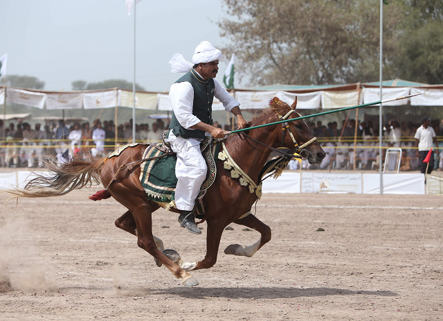 pakistanis seek world record in ancient sport of tent pegging