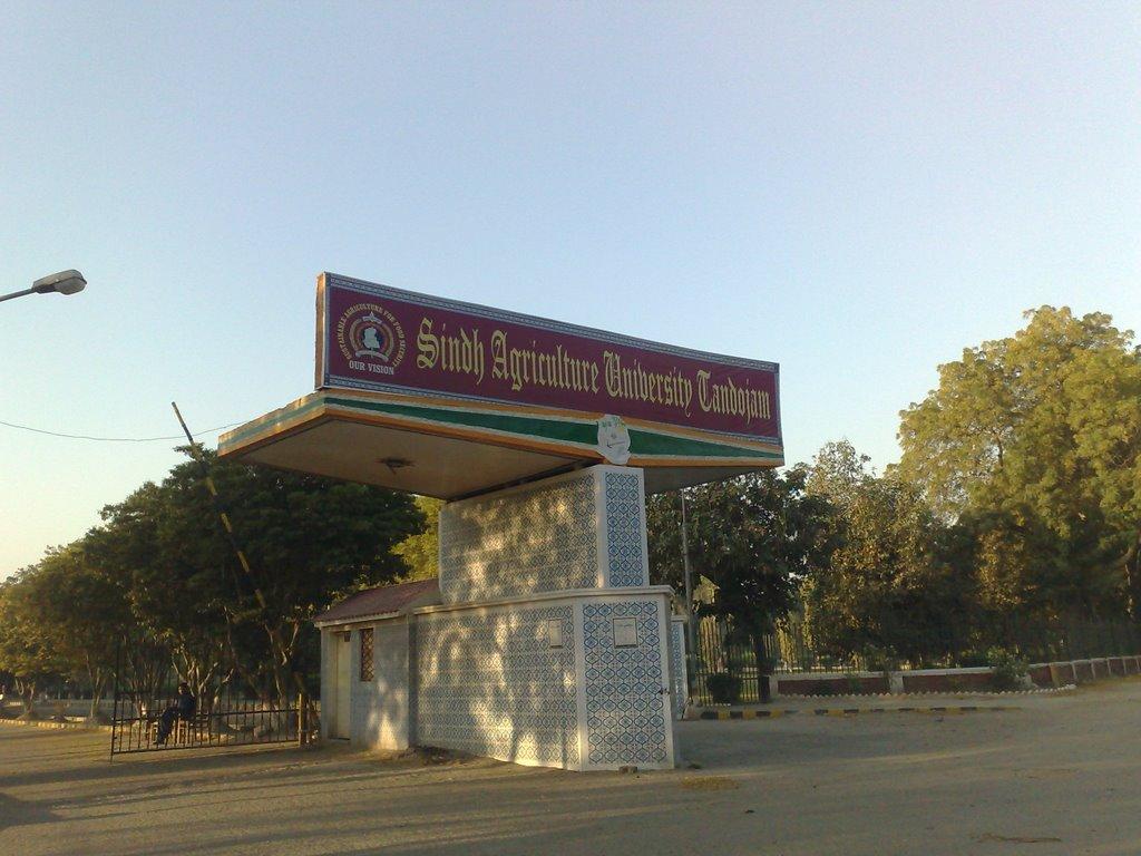 sindh agricultural university tando jam