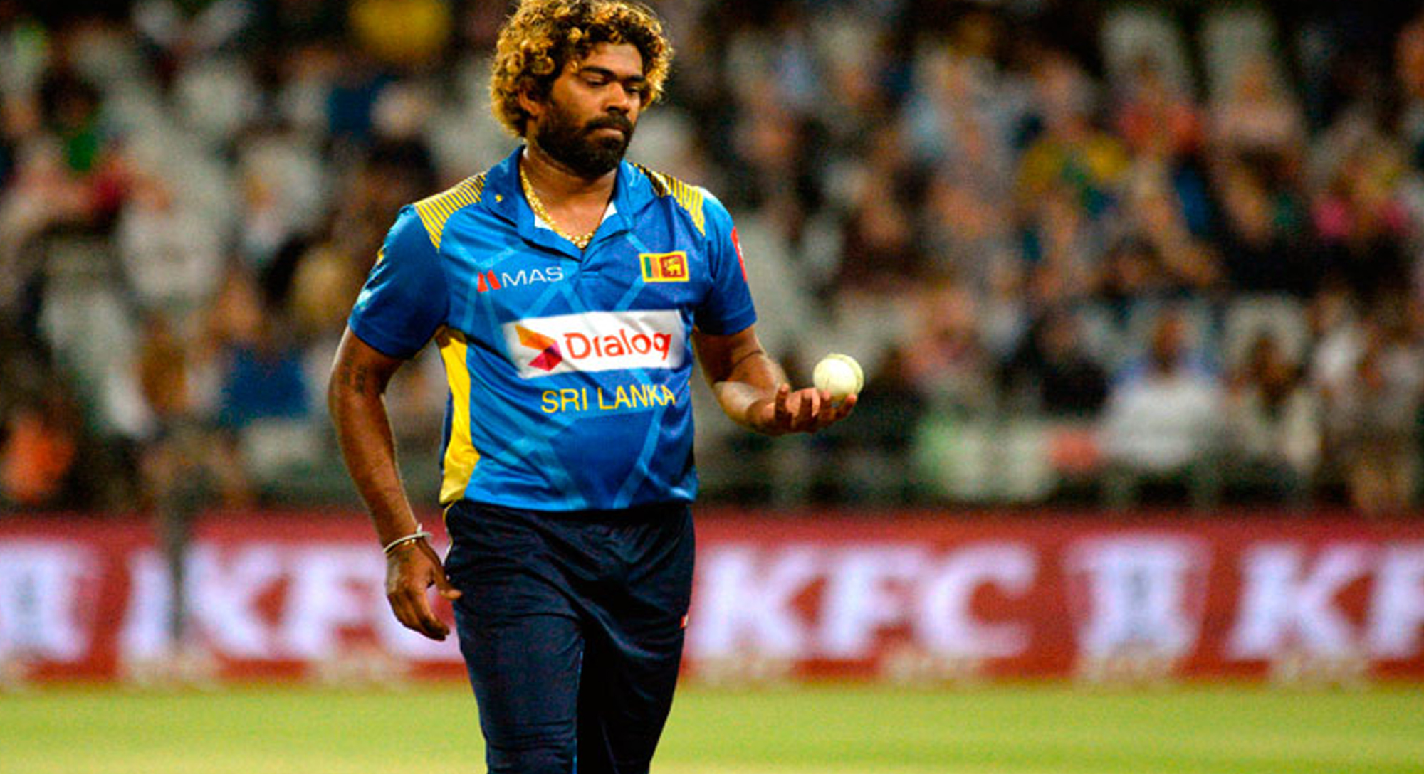 old warhorse malinga keeps sri lanka dreaming