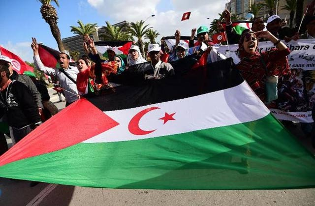 algeria human rights activist dies in prison lawyer