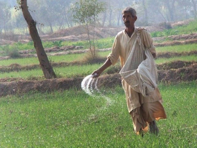 Punjab agriculture minister worried about availability for upcoming Rabi crops. PHOTO: EXPRESS