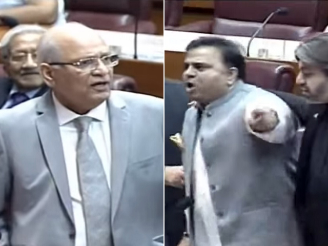 PTI leader pounces on PML-N senator after being called 'dabbu'. SCREENGRABS