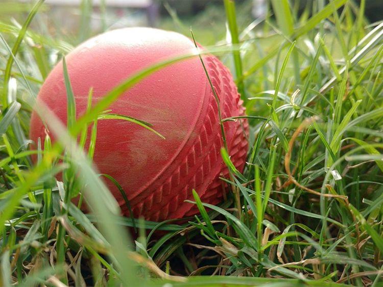 club in england introduces vegan cricket ball