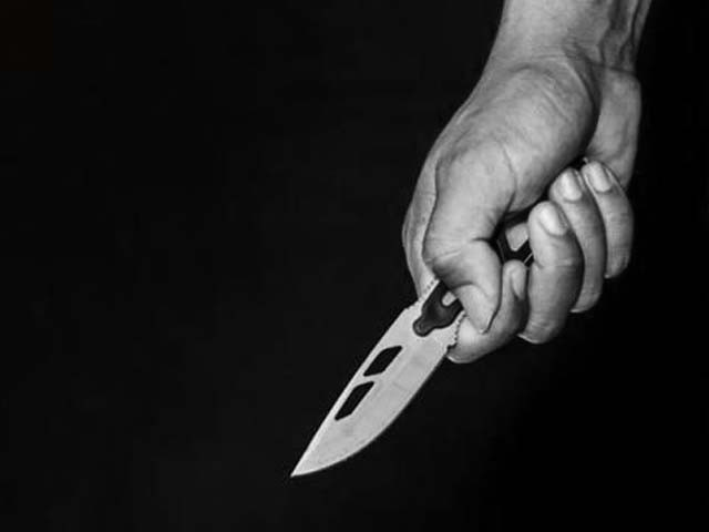 two brothers stabbed to death