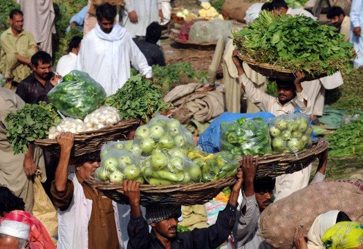 smuggled indian fruit and vegetables no longer available in punjab