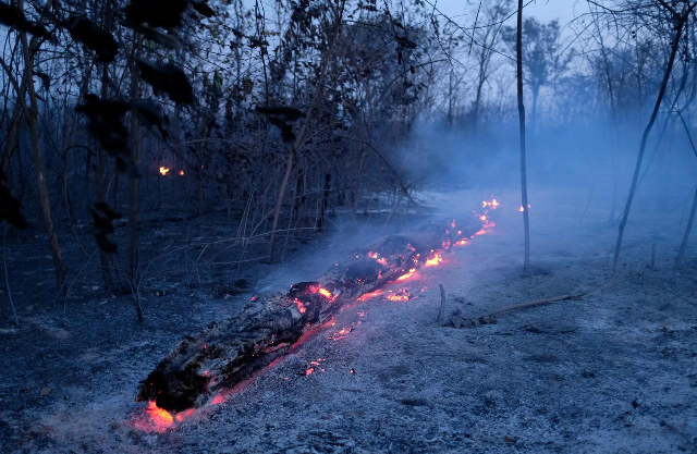 Weather experts say that rain will not stop the burning of the Amazon forest. PHOTO: Reuters