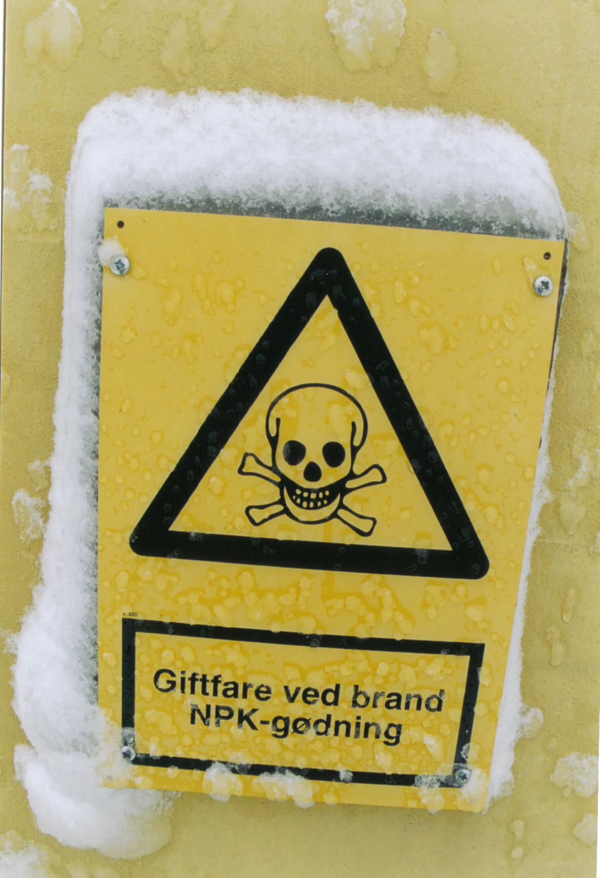 toxic sewer gases kill three workers
