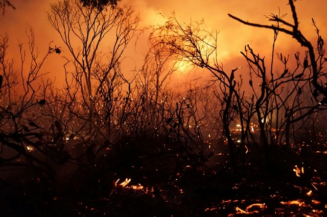 Bushfires are an annual occurrence in Australia during the southern hemisphere spring and summer. This photo from 2018 shows a blaze in Queensland. (Photo: AFP)