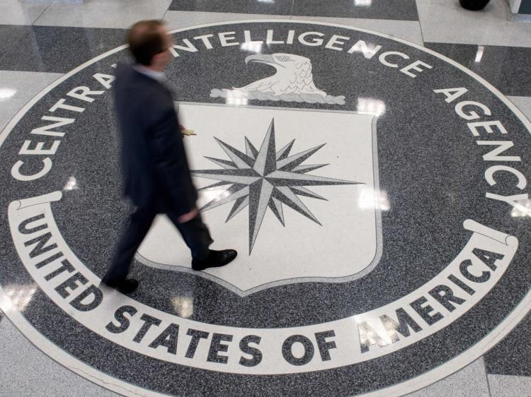 cats dolphins and one smart raven the cia s secret animal spies