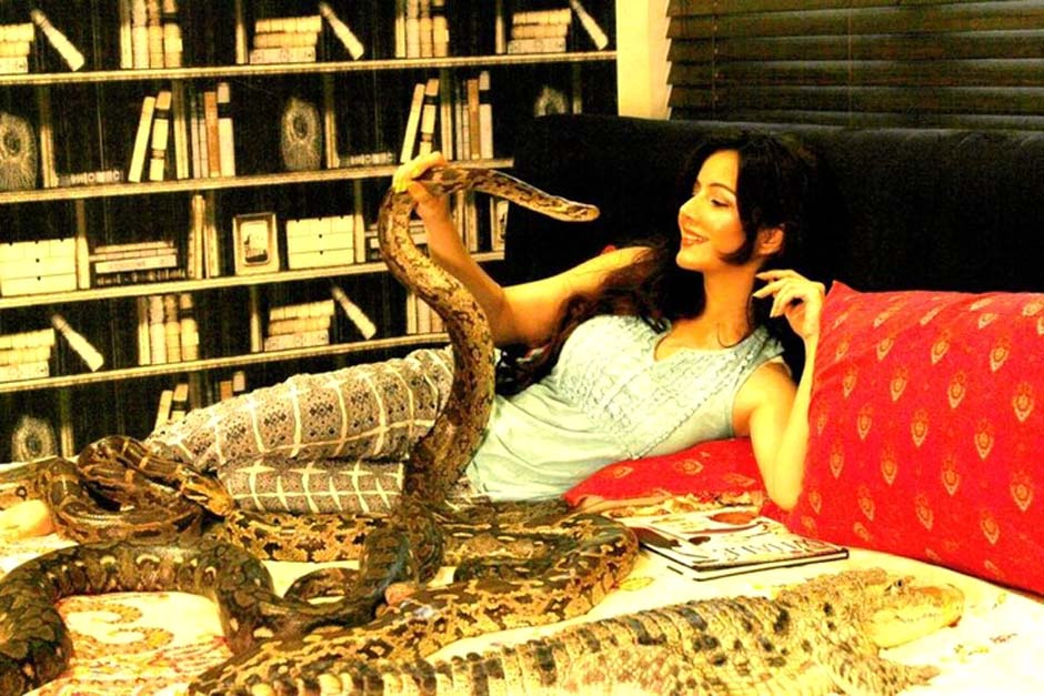 court summons singer rabi for keeping reptiles