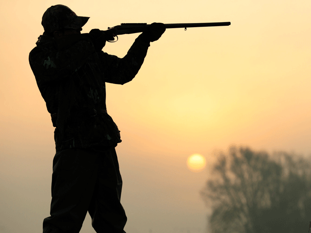 partridge hunting gets the green light