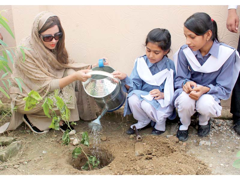 students plant trees distribute reusable bags