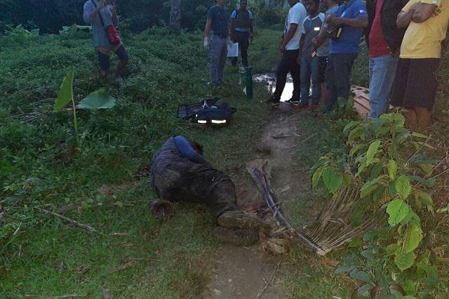 murders of land activists spike under philippines duterte watchdog