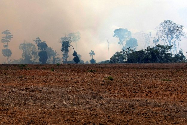 brazil arrests 63 levies 8 7 million in fines over fires