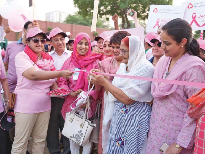 experts partaking in pink walk stress early detection of breast cancer