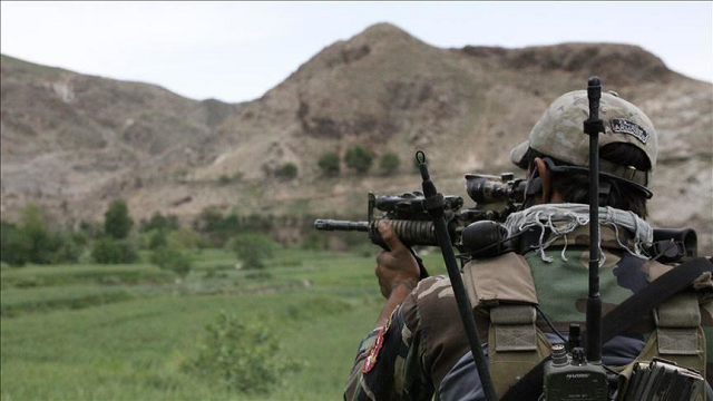 afghan us forces kill over 80 taliban fighters