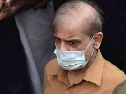 proclamation declaring shehbaz s wife absconder pasted in court