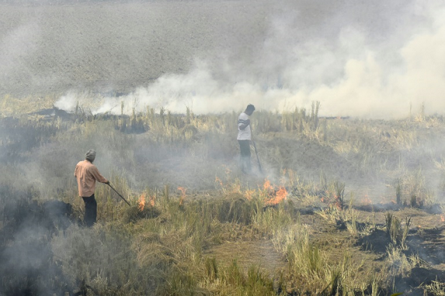 smog scores of indian farmers arrested over polluting fires