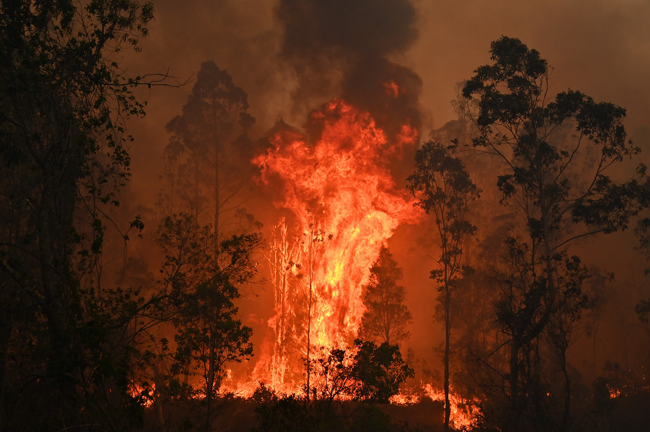 in pictures hellish scenes from australia bushfires