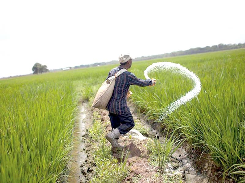 pakistan s excess urea can fetch 250m in exports