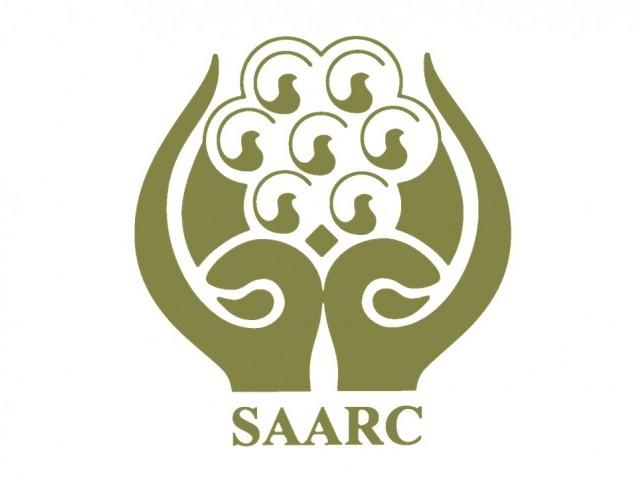saarc can promote economic cooperation peace in region maldives ambassador