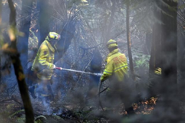 state of emergency declared as bushfires rage in australia
