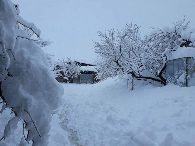 at least 14 killed as heavy rain snow lashes parts of country