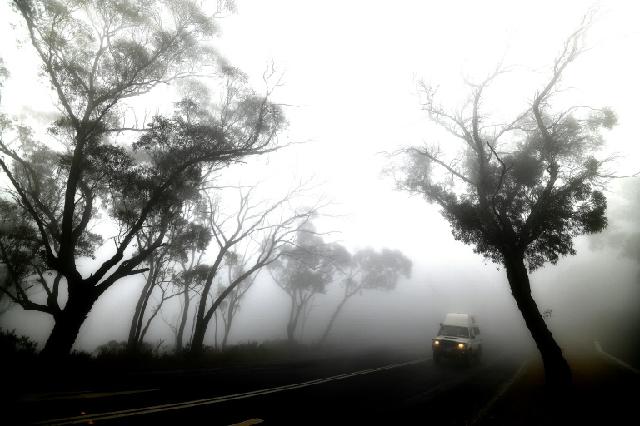 rain offers hope in australian bushfire fight