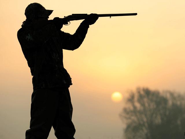 awareness stressed to avoid shooting endangered animals