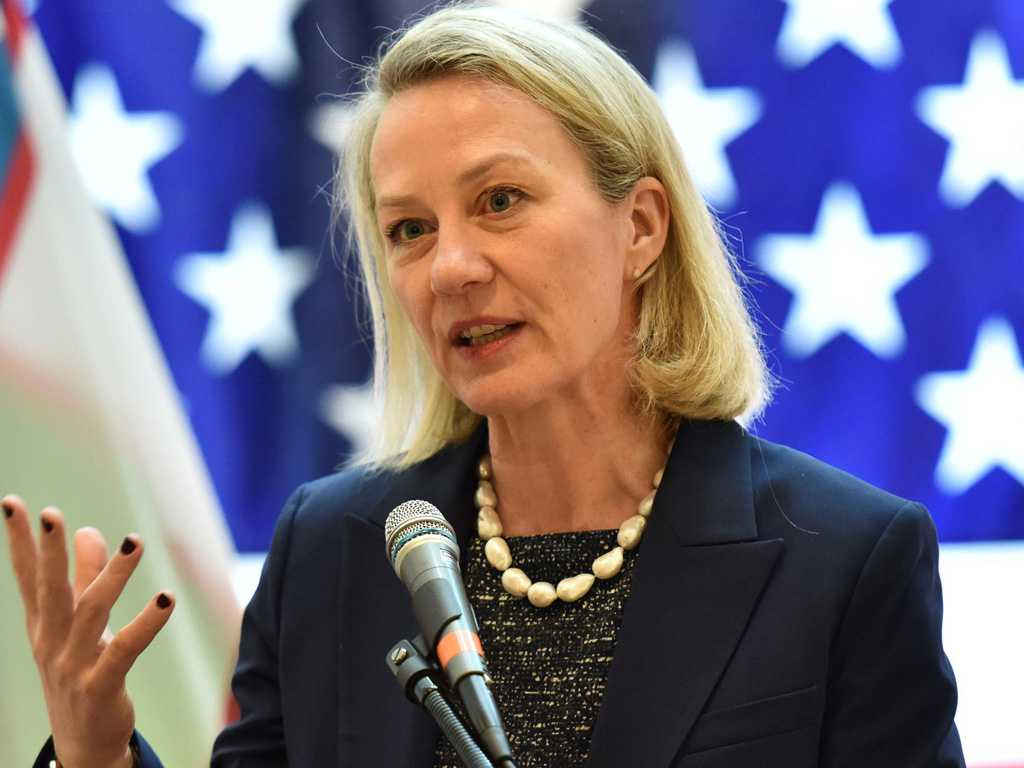 alice wells flew from new delhi where she held talks with senior indian officials on range of issues photo file