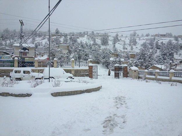 centre announces relief for victims of snow havoc