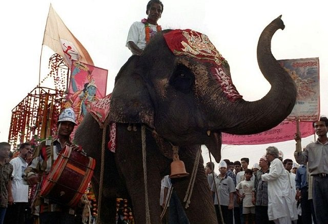 bangladesh s biggest zoo calls time on elephant rides