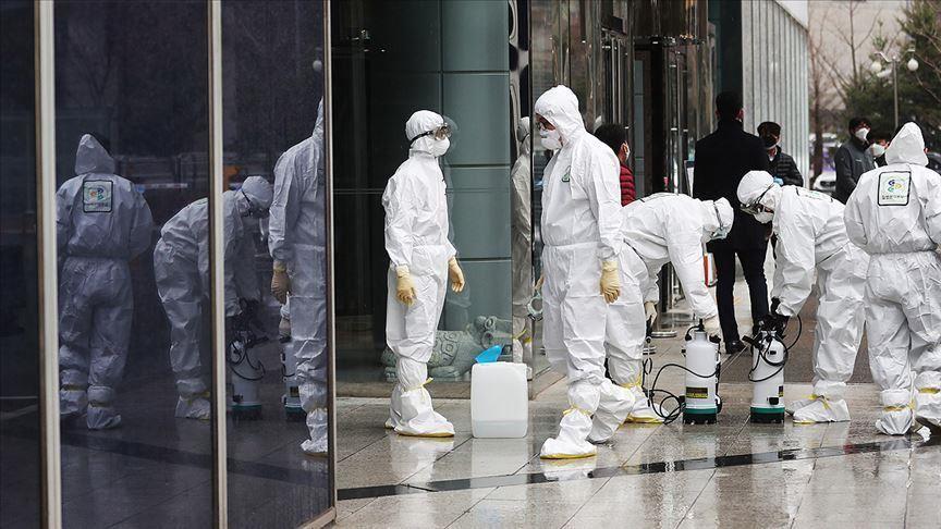 south korea declares war on coronavirus