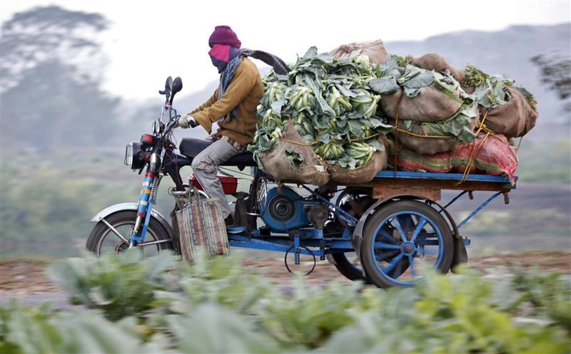 a farmer transports vegetables on an improvised tricycle towards a wholesale market in kolkata january 6 2011 india 039 s food inflation accelerated for the fifth straight week to the highest in more than a year up 18 32 percent in the year to dec 25 reinforcing fears it will spill over to broader prices and pile pressure on the central bank to tighten monetary policy reuters rupak de chowdhuri india   tags agriculture business food transport images of the day