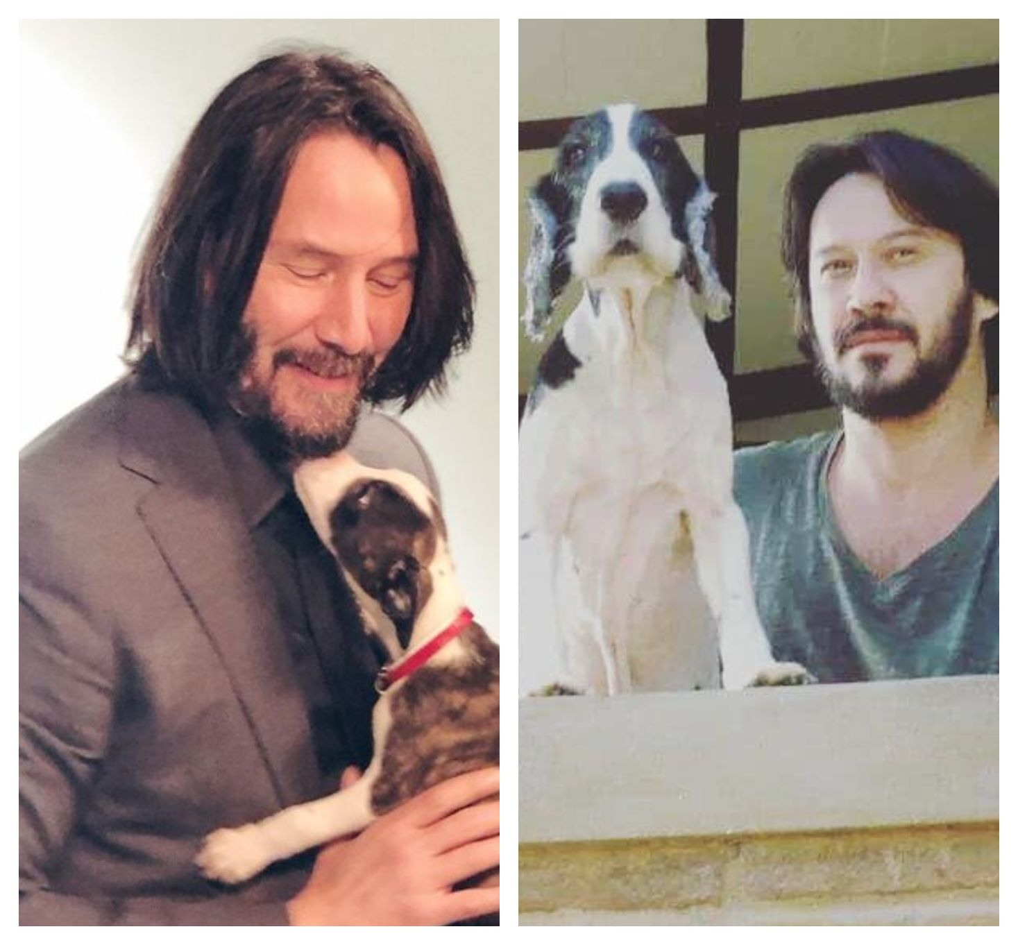 i am single and looking like keanu reeves really helps