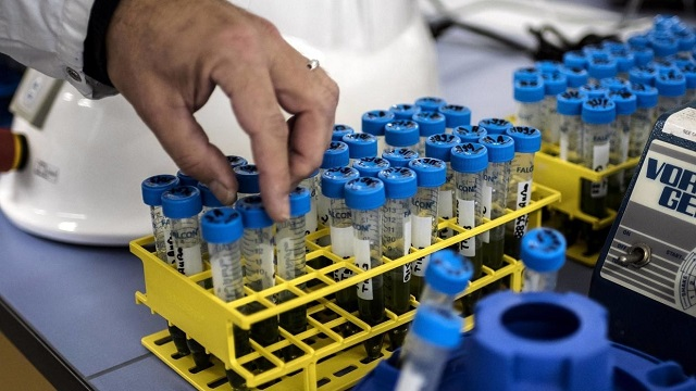 given spread pandemic urgency is critical to launch of any clinical trial in pakistan says pharma firm photo afp file